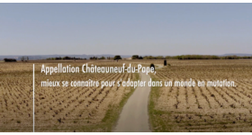 Châteauneuf-du-Pape and agroecological transition